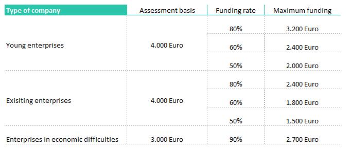 Tabelle mit Informationen zu Unternehmensarten und Förderungshöhen für die Bafa Förderung